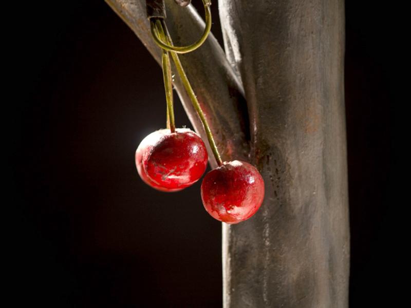Albero di ciliegio cod214