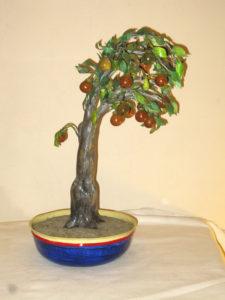 Bonsai caco cod230