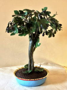 Bonsai fico cod232