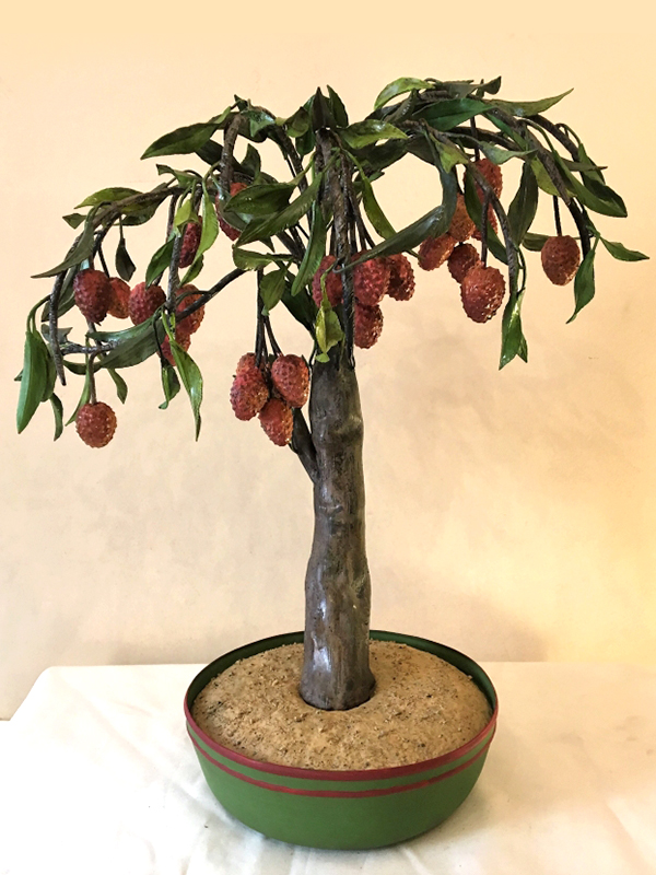 Bonsai litchi cod234