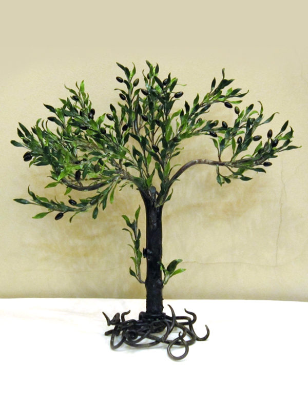 Bonsai ulivo cod242