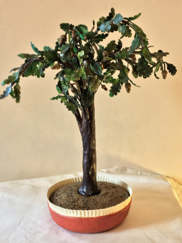 Bonsai quercia cod241